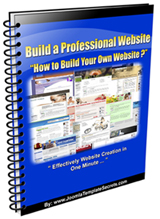 Build a Professional Website